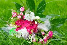 Free Bunch Of Flowers Royalty Free Stock Photo - 19967695