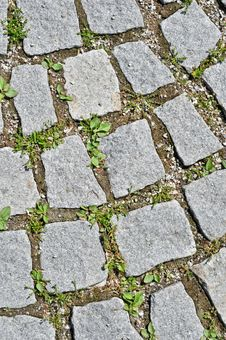 Free Pavement Stone Tile Royalty Free Stock Photo - 19968255