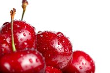 Free Fresh Cherry Berries With Drops Stock Photography - 19968942