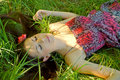 Free The Young Girl Lies In A Grass Stock Images - 19976104