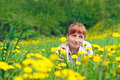 Free Red Woman On The Grass Royalty Free Stock Photo - 19978375
