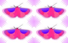 Free Texture Of A Butterfly Stock Photos - 19973513