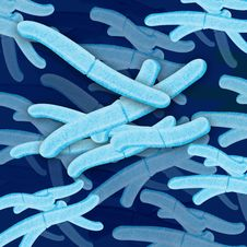 Free Bacteria Cell Grouping Stock Images - 19973644
