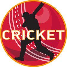 Cricket Player Batsman Sports Ball Stock Photography