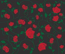 Free Rose Flower Background Royalty Free Stock Images - 19974029