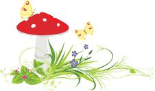 Free Fly Agaric Mushroom, Flowers And Butterflies Stock Images - 19975074