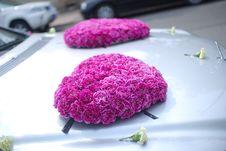 Free Wedding Car Flowers Stock Photos - 19976023