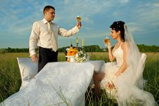 Wedding Dinner On The Field Stock Photography