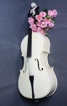 Cello Royalty Free Stock Image