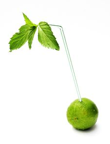 Lime With A Straw Stock Photo