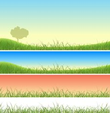 Spring And Summer Grass Set Stock Photo