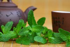 Free Mint Tea Stock Photo - 19978000