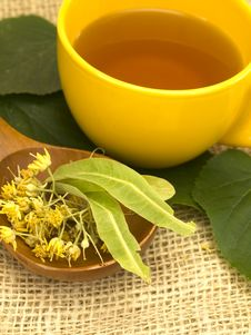 Free Cup Of Linden Tea Stock Image - 19979631