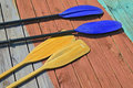 Free Oars And Paddles Stock Image - 19980031