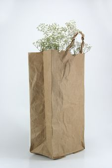 Free Brown Crumpled Paper Bag Stock Image - 19980041