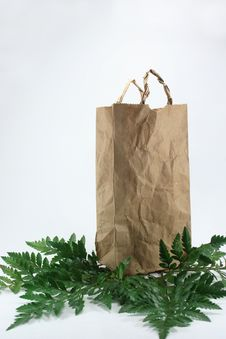 Free Brown Crumpled Paper Bag Stock Photography - 19980152