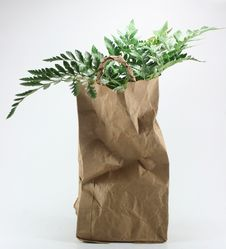 Free Brown Crumpled Paper Bag Stock Images - 19980174