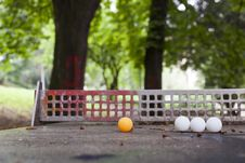 Free Ping Pong Balls Royalty Free Stock Images - 19981049