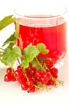 Free Compote Of Red Currants Stock Photos - 19981073