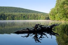 Free Reflections Ar Locust Lake Stock Image - 19984581