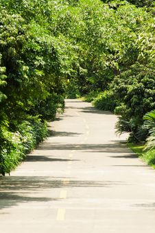 Free Winding Road Stock Photography - 19986552