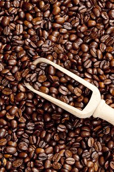 Free Coffee Beans Stock Photography - 19989742