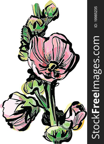 Blooming rose mallow branch