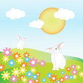 Free Two Rabbits On A Hills Among Flowers Royalty Free Stock Photos - 19998818