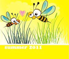Free Two Happy Bees Stock Photo - 19990770