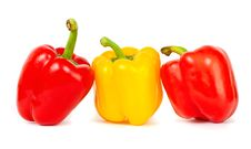 Free Sweet Peppers Stock Image - 19991341