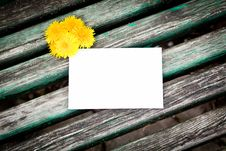 Free Blank Card With Dandelion Royalty Free Stock Photo - 19995025