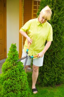 Free Woman Cut Bush Clippers Royalty Free Stock Photography - 19995167