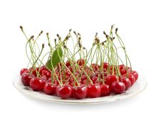 Free Cherry With A Branch On A Dish Stock Photography - 19996172