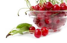 Free A Cherry With A Branch Royalty Free Stock Images - 19996199