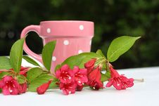 Free Pink, Spring Flowers And A Cup Royalty Free Stock Images - 19998159