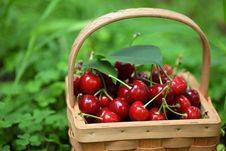 Free Fresh Red Cherries Royalty Free Stock Image - 19999226