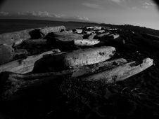 Free Esquaimalt Lagoon Stock Images - 22134