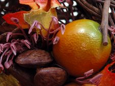 Free Fruits & Nuts Stock Photos - 24453