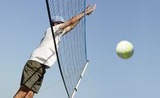 Free Volleyball Royalty Free Stock Images - 26999