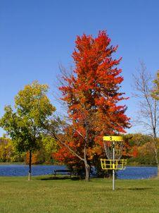 Autumn Disc Golf II Stock Photo