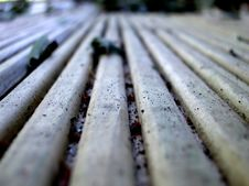 Free Decking Stock Images - 29924