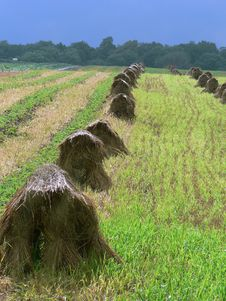 Free Haystack 3 Stock Photography - 206702