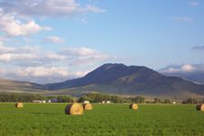 Free Hay Stacks Royalty Free Stock Image - 206796