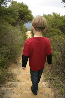 Free Bushwalking Stock Photo - 208150