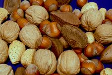 Free Assorted Nuts On Blue Stock Photos - 2000833