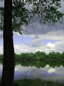 Free Tree With Green Leaves And River And Clouds Stock Photo - 2003000