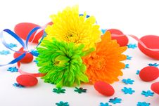 Free Composition With Flowers. Stock Photo - 2006420