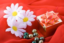 Free Composition With Flowers. Royalty Free Stock Photo - 2006635