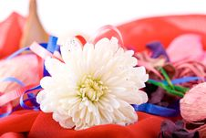 Free Composition With Flowers. Stock Photo - 2006810