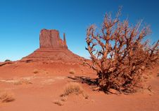 Free Monument Valley Navajo Tribal Park Stock Photos - 2006813